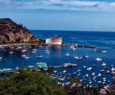 What to Do in Eight Hours on Catalina Island